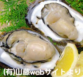 岩牡蠣(山藤web)