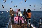 熱海遊覧船